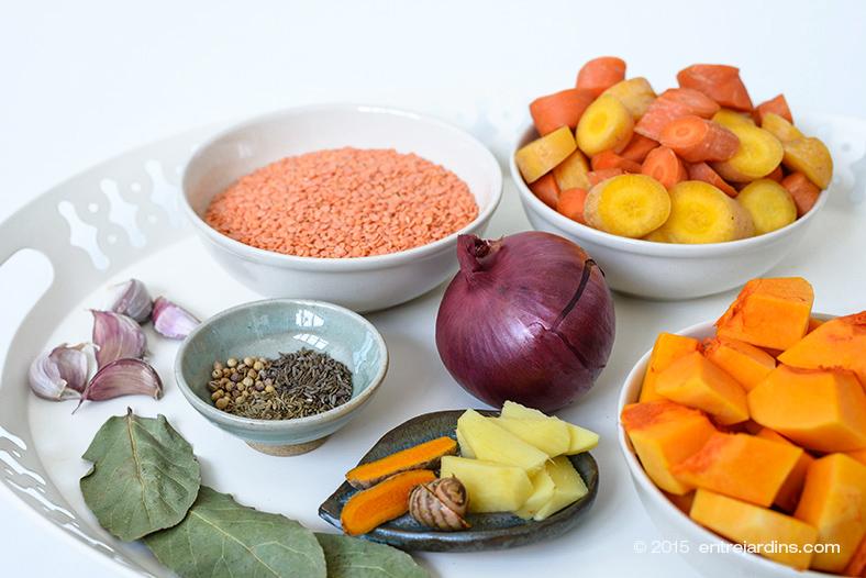carrot-lentil-soup01