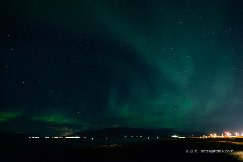 Entrejardins in Iceland