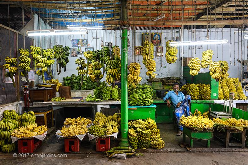 mysore-market-01